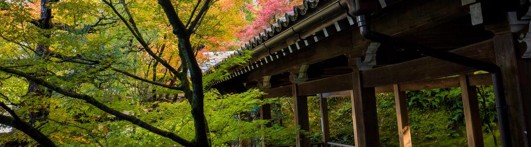 社寺仏閣の写真